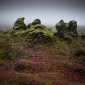mossy-rocks-in-the-mist.jpg